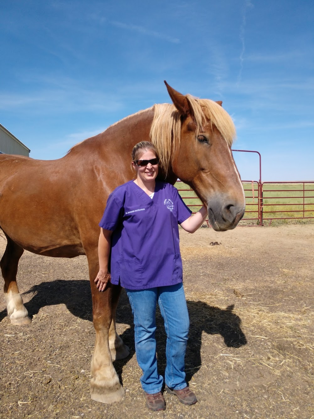 Living Springs Veterinary Care and Pet Boarding